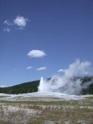 SPENDCATION Yellowstone