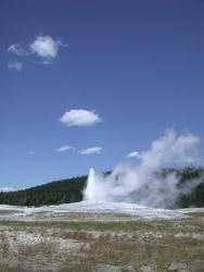 SPENDCATION Yellowstone