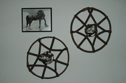 Toaster Horse snowshoes