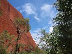 OBT 8 back of Uluru2