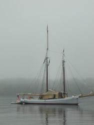 IE foggy ship