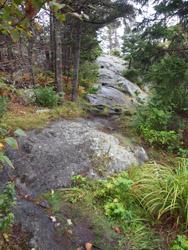 Monhegan hike #10