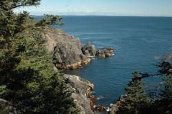 Monhegan Squeaker Cove