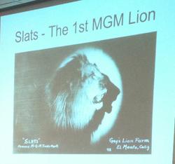 Leo the MGM lion Slats