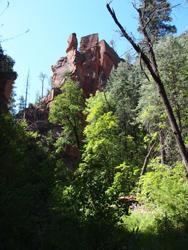 Sedona scenes Oak Creek canyon