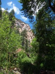 Sedona scenes Oak Creek canyon3