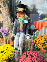 Scarecrows Earl Grey