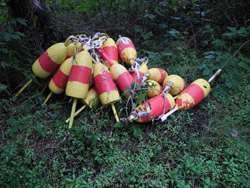 Monhegan2 lobster buoys