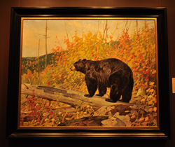 WY Wildlife Art Museum bear