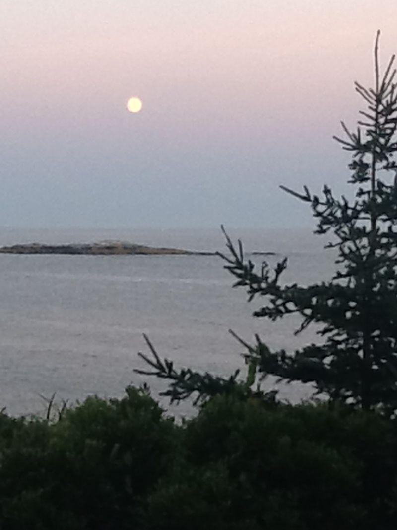 Blue moon-8-12-13