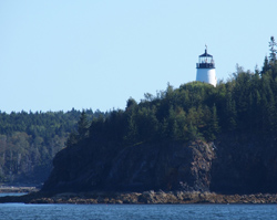 Vinalhaven Owls head