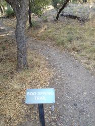 Madera Hog Spring Trail