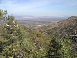 Madera view