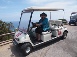 Catalina_golf cart