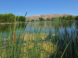 Dead Horse State Park_lagoon2
