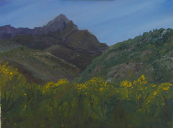 Madera-Canyon painting